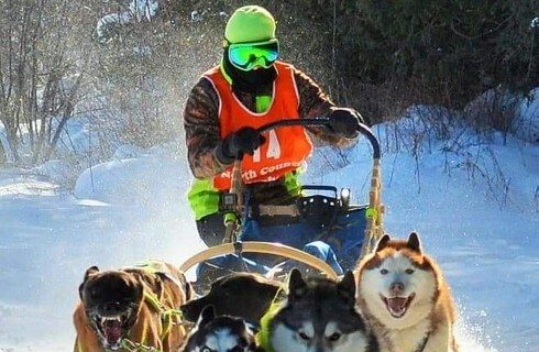 Man in snow goggles and orange vest standing on a sled with four dogs in the snow
